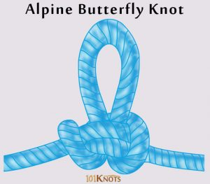 Butterfly Knot Pictures