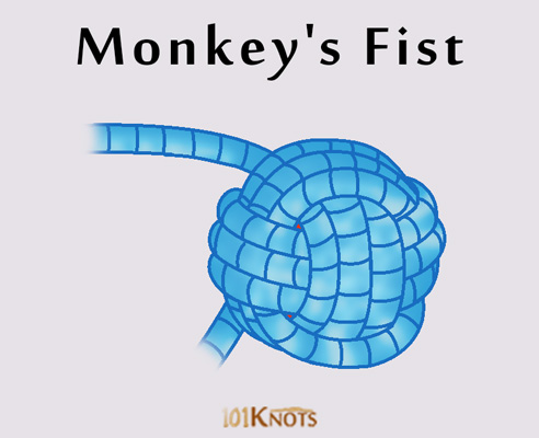 Monkeys Making fist knot a