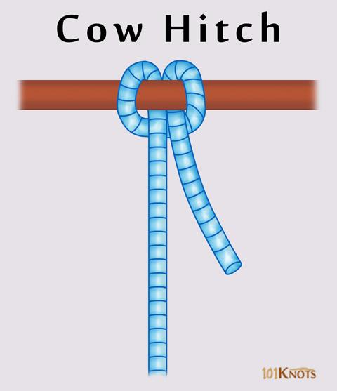 Cow-Hitch.jpg