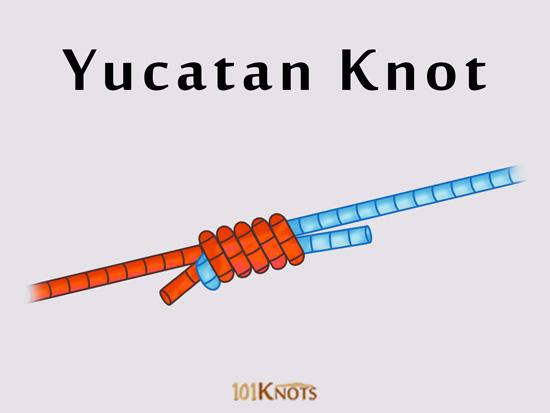 Yucatan Knot 101knots