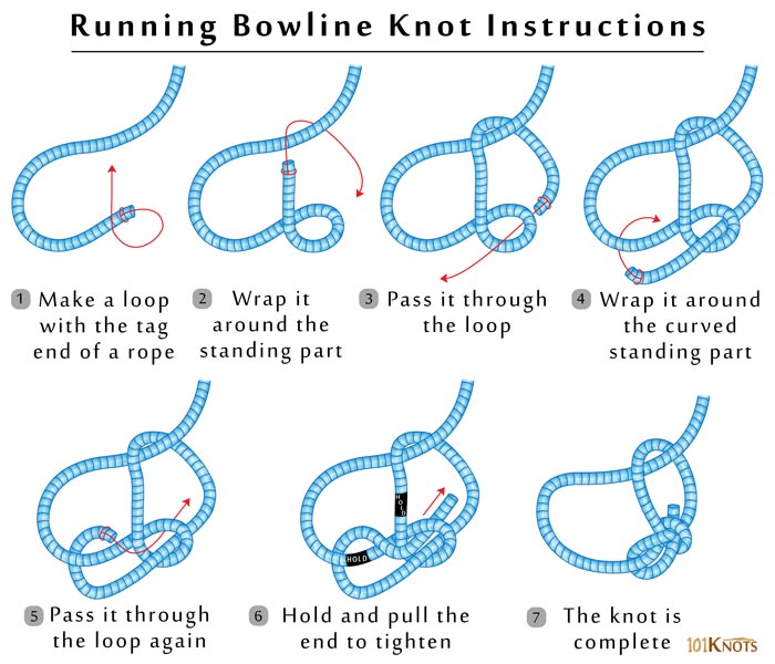 running bowlineBowline Knot Diagram Here Are The Basic Knots #10