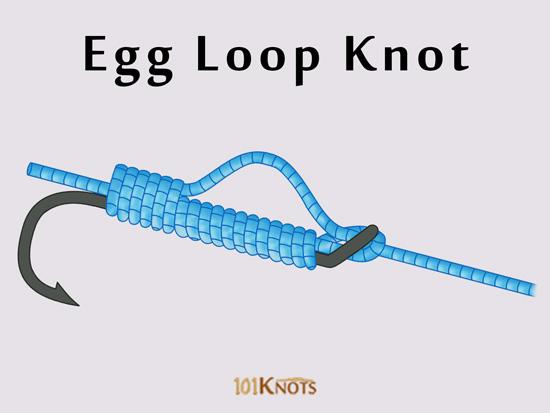 Egg Loop Knot 101knots